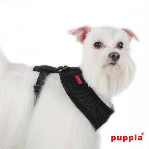 Puppiass14HSoft%2022-500x500.jpg