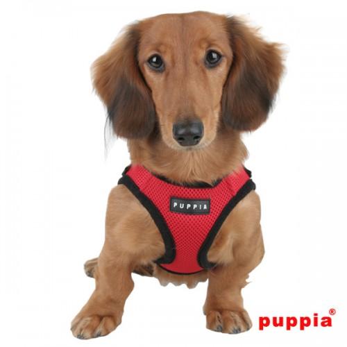 Puppiass14HSoft%20B%2013-500x500.jpg