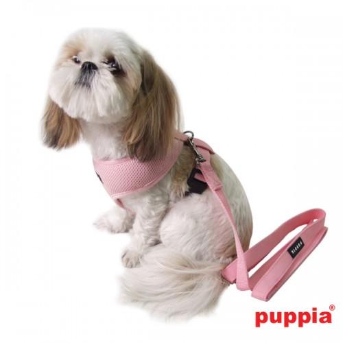 Puppiass14LTwoTone%2012-500x500.jpg